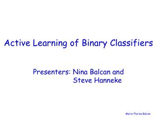 Active Learning of Binary Classifiers