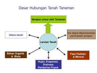 Dasar Hubungan Tanah Tanaman