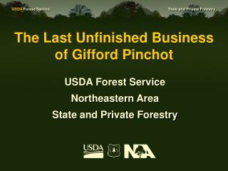 The Last Unfinished Business of Gifford Pinchot
