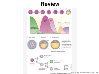 Wang and Dey, 2006 Nature Reviews 7:185-199