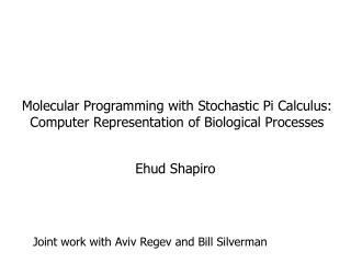 Molecular Programming with Stochastic Pi Calculus: Computer Representation of Biological Processes