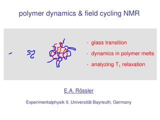 polymer dynamics & field cycling NMR