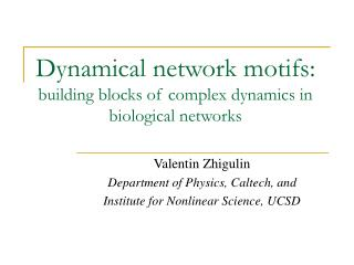 Dynamical network motifs: building blocks of complex dynamics in biological networks