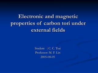 Electronic and magnetic properties of carbon tori under external fields