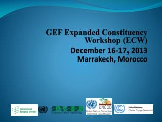 GEF Expanded Constituency Workshop (ECW) December 16-17 , 2013 Marrakech, Morocco