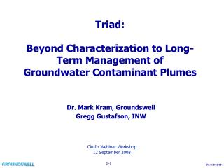 Triad: Beyond Characterization to Long-Term Management of Groundwater Contaminant Plumes