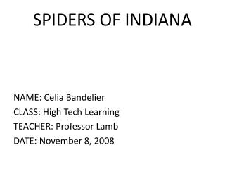 SPIDERS OF INDIANA