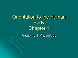 Orientation to the Human Body Chapter 1