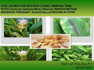 Oleh Luh Putu Ayu P. I. 0910710091