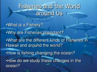 Fisheries and the World around Us