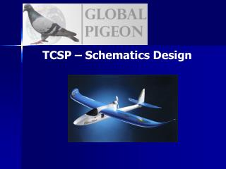TCSP – Schematics Design
