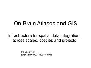 On Brain Atlases and GIS