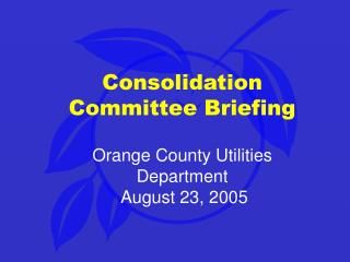 Consolidation Committee Briefing Orange County Utilities Department  August 23, 2005