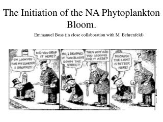 The Initiation of the NA Phytoplankton Bloom.