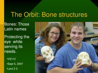 The Orbit: Bone structures