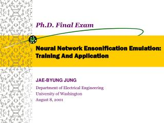 Ph.D. Final Exam Neural Network Ensonification Emulation:  Training And Application