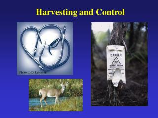 Harvesting and Control