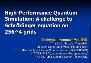 High-Performance Quantum Simulation: A challenge to Schr ö dinger equation on 256^4 grids