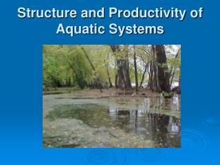 Structure and Productivity of Aquatic Systems