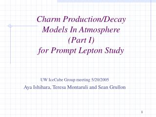 Charm Production/Decay  Models In Atmosphere (Part I) for Prompt Lepton Study