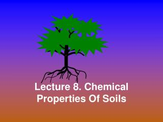 Lecture 8. Chemical Properties Of Soils