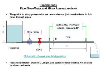 Experiment 5 Pipe Flow-Major and Minor losses ( review)