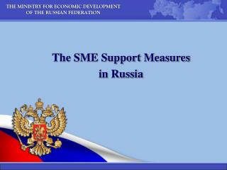 THE MINISTRY FOR ECONOMIC DEVELOPMENT  OF THE RUSSIAN FEDERATION