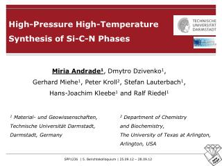 High-Pressure High-Temperature  Synthesis of Si-C-N Phases