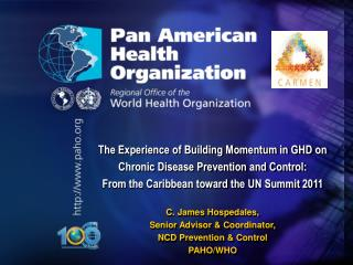 The Experience of Building Momentum in GHD on  Chronic Disease Prevention and Control: