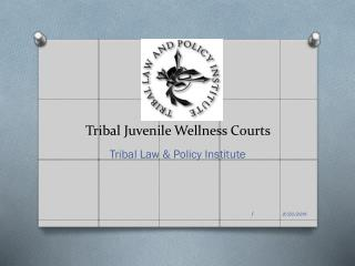 Tribal Juvenile Wellness Courts