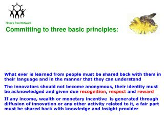 Committing to three basic principles: