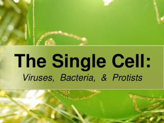 The Single Cell: