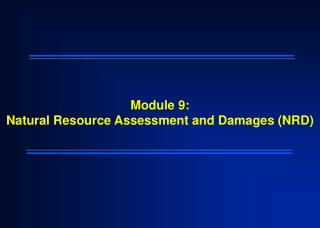 Module 9: Natural Resource Assessment and Damages (NRD)