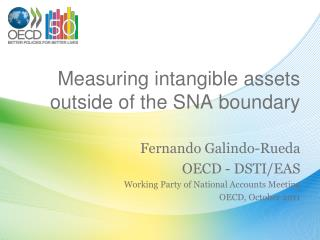 Measuring intangible assets outside of the SNA boundary