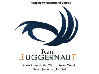 Flapping Wing Micro Air Vehicle