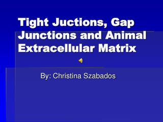 Tight Juctions, Gap Junctions and Animal Extracellular Matrix