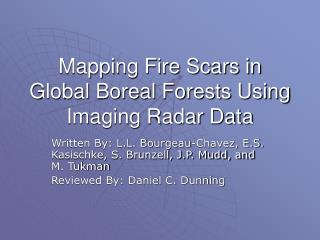 Mapping Fire Scars in Global Boreal Forests Using Imaging Radar Data