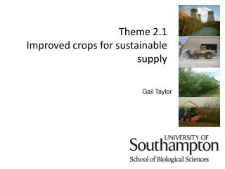 Theme 2.1 Improved crops for sustainable supply