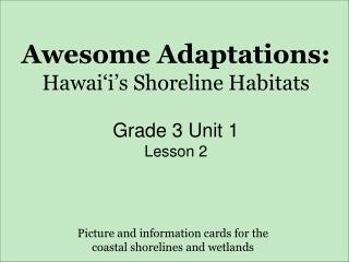 Awesome Adaptations: Hawai'i's Shoreline Habitats Grade 3 Unit 1  Lesson 2
