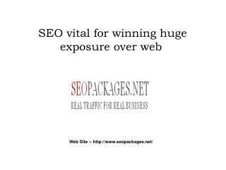SEO vital for winning huge exposure over web