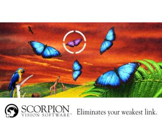 Introduction to  Scorpion Vision Software