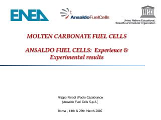 MOLTEN CARBONATE FUEL CELLS ANSALDO FUEL CELLS:  Experience & Experimental results