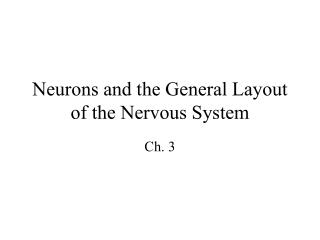 Neurons and the General Layout of the Nervous System