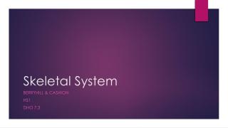 Axial Skeleton - Ribs