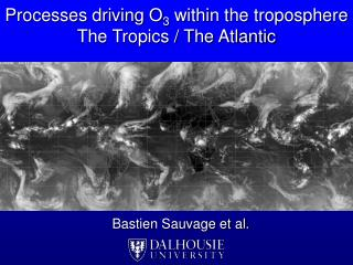Processes driving O 3  within the troposphere The Tropics / The Atlantic