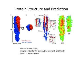 Protein Structure and Prediction