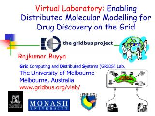 Virtual Laboratory:  Enabling Distributed Molecular Modelling for Drug Discovery on the Grid