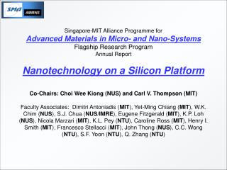 Singapore-MIT Alliance Programme for Advanced Materials in Micro- and Nano-Systems