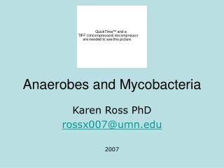Anaerobes and Mycobacteria