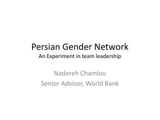 Persian Gender Network An Experiment in team leadership